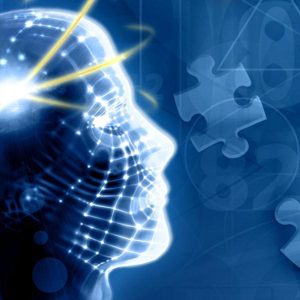 psychology essay on intelligence